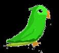 Loro verde - pelaje 1340000003
